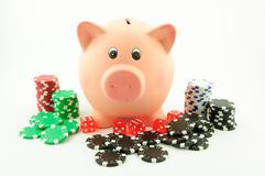Gambling with the piggy bank. Gambling addiction can lead to consuming the savings of a lifetime royalty free stock images