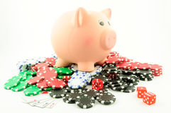 Gambling with savings Royalty Free Stock Photos