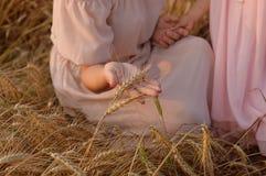 Gambo commovente del grano della mano della donna Indicatore luminoso dorato Immagine Stock Libera da Diritti