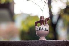 Gambo del finocchio in barattolo decorativo dell'argilla fotografia stock libera da diritti
