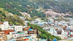 Gamcheon Culture Village, Busan Stock Images