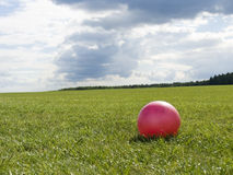 Game in a ball. Small bright ball on a huge green lawn Royalty Free Stock Photography