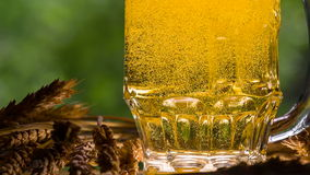 Game of Bubbles in a Glass of Beer stock footage