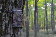 Game Camera Mounted on Tree Royalty Free Stock Images