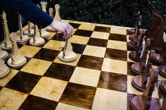 The game of chess. The beginning of the game. Royalty Free Stock Images