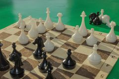 Game of chess. The game is in full swing. On the board is a complex combination. Analysis of options, calculation of future actions. Green background, daylight Royalty Free Stock Photography