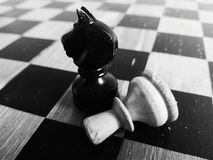 The Game. Chess pieces close up black and white Stock Photo
