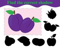 Game for children. Find the correct shadow of plums. Education. Vector illustration Royalty Free Stock Image