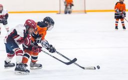 Game between children ice-hockey teams Stock Image