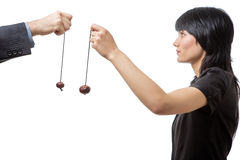 Game of conkers Stock Image