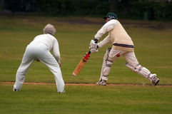Game of Cricket. Action photo of people playing cricket stock image