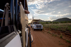 Game drive at sunset or sunrise Stock Image
