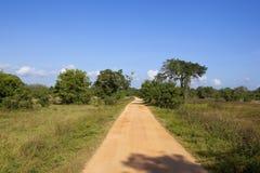 Sandy jeep track in Wasgomuwa national park in Sri Lanka Stock Image
