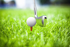 Game in a golf Stock Photography