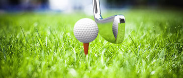 Game in a golf Stock Image
