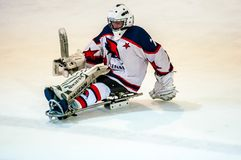 Game in ice sledge hockey Royalty Free Stock Photo
