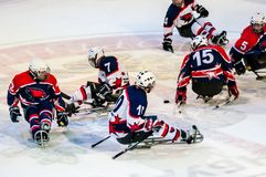 Game in ice sledge hockey Royalty Free Stock Image