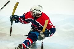 Game in ice sledge hockey Stock Images