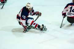 Game in ice sledge hockey Royalty Free Stock Photography