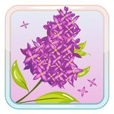 Game Icon with Lilac Flower. Vector icon with lilac flower. Perfect for game and app icons devoted to floral topic Royalty Free Stock Photo