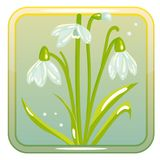 Game Icon with Snowdrop Flower. Vector icon with snowdrop flower. Perfect for game and app icons devoted to floral topic Royalty Free Stock Image