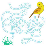 Game labyrinth find a way bird vector illustration Stock Photos