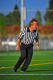 Game official On the move Royalty Free Stock Photos