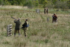 Game Shoot. In Ellingham, Northumberland stock photography