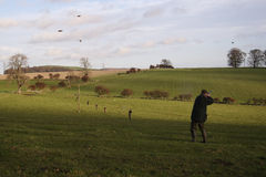 Game shoot. For partride, snipe and pheasant royalty free stock photo