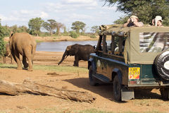 Game viewing vehicle and elephants Stock Photos