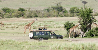 Game viewing vehicle in the savanna Royalty Free Stock Images