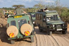 Game viewing vehicle in the savanna Royalty Free Stock Photo