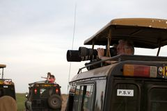 Game viewing vehicle and wildlife photographer Royalty Free Stock Photo