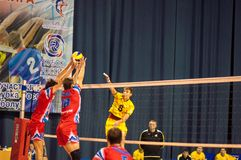 The game of volleyball Royalty Free Stock Photos