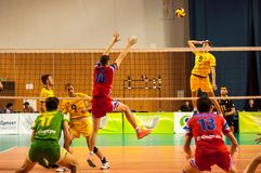 The game of volleyball Stock Image