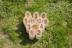 Game of Wooden pine sticks on grass Stock Photography