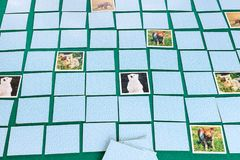 Free Gameboard Of Concentration Memory Card Game Stock Photo - 144759040