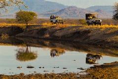 Gamedrive em África fotos de stock royalty free