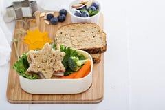 Gamelle avec le sandwich et la salade Photo libre de droits