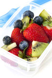 Gamelle de salade de fruits Images libres de droits
