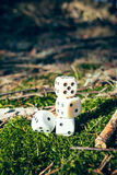Games Dice Royalty Free Stock Image