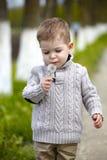 2 gamla år behandla som ett barn pojken med maskrosen Arkivfoton