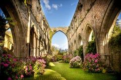 Gamla Abbaye Maritim de Beauport, i Paimpol, skjul-D`-harnesk, Brittany, Frankrike Royaltyfria Bilder