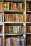 Gamla böcker i Mafra slottarkiv Royaltyfri Foto