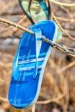 Gamla borttappade och kasserade badskosandaler som hänger i filialer av sjösidaträd royaltyfri foto