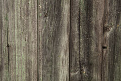 Gamla bräden arkivbild