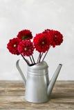 Gamla bräden med att bevattna för hink av blommatappning Royaltyfri Bild