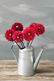 Gamla bräden med att bevattna för hink av blommatappning Royaltyfri Fotografi