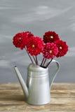 Gamla bräden med att bevattna för hink av blommatappning Arkivfoto