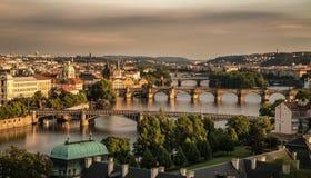 Gamla broar av Prague Arkivbild